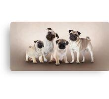 4 Cute Pug Puppies Canvas Print