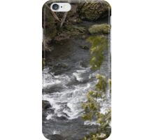 Gorge Water iPhone Case/Skin