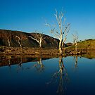 Reflections on Lake Argyle Kununurra by Lass With a Camera