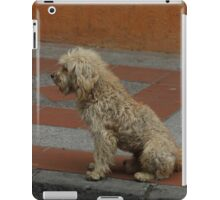 Dirty Stray Dog iPad Case/Skin