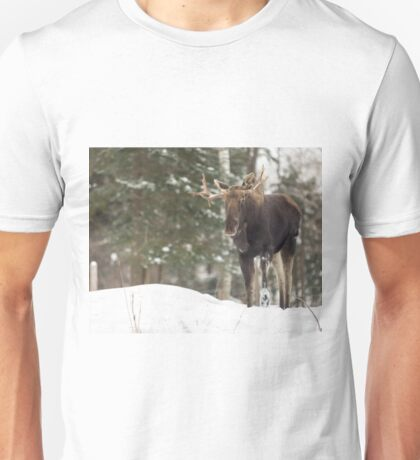 Bull moose in winter Unisex T-Shirt