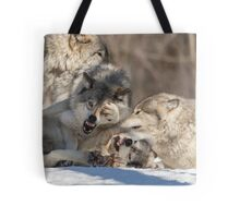 Timber wolves playing in winter Tote Bag
