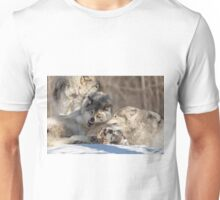Timber wolves playing in winter Unisex T-Shirt