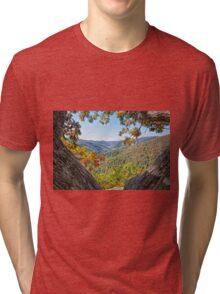 Portal To Beauty Tri-blend T-Shirt