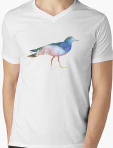 Killdeer Mens V-Neck T-Shirt