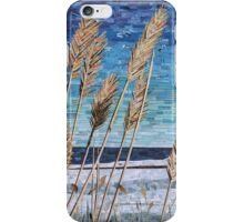 Wintertime on Lake Erie iPhone Case/Skin