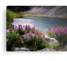Fireweed and Water Metal Print