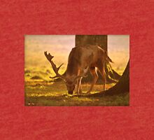 A Scavenging Stag in Petworth Park Tri-blend T-Shirt