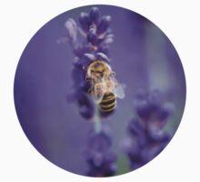 Little Bee in Lavender Baby Tee