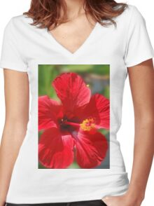 Big Red Women's Fitted V-Neck T-Shirt