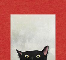 Curious Black Cat Tri-blend T-Shirt