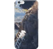 Bearskin Beckoner iPhone Case/Skin