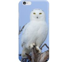 Posing for Playbird iPhone Case/Skin