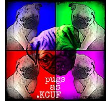 Pugs As KCUF Photographic Print