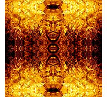 Brother Meditation - gamma charge Photographic Print