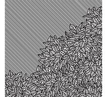 Modern Hand Drawn Foliage Leaves and Stripes Photographic Print