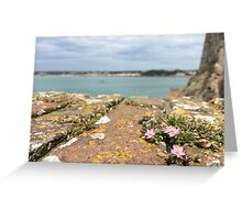 Jersey  Greeting Card