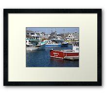 Boater Gull Framed Print