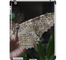 White Witch Moth iPad Case/Skin