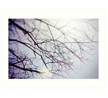 Ghost Trees III // color Art Print