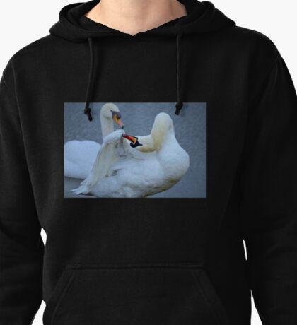 Swan Preening Pullover Hoodie