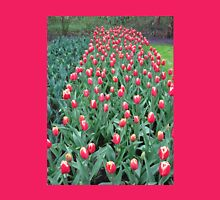 Two-Tone Tulips - Keukenhof Gardens Womens Fitted T-Shirt