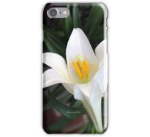 The Easter Lily ~ a Biblical Flower iPhone Case/Skin