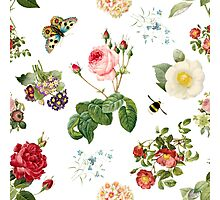 Redoute's Garden, Collage Photographic Print