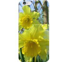 Happy Spring iPhone Case/Skin