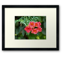 flowers red bells on green Framed Print