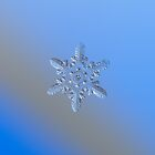 Heart-powered star (alt), real snowflake macro photo by Alexey Kljatov