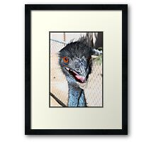 Oh Look He's Happy Framed Print