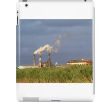 Sugar Plantation iPad Case/Skin