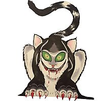 wicked cat  Photographic Print