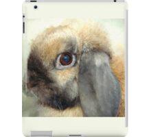 Lop eared dwarf rabbit iPad Case/Skin
