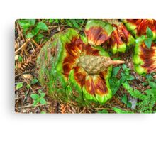 Hoop Pine Fruit Patterns Canvas Print