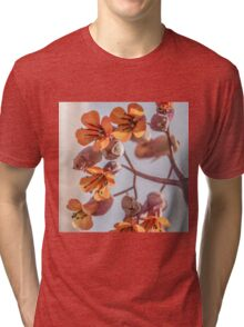 Signs of Spring Tri-blend T-Shirt