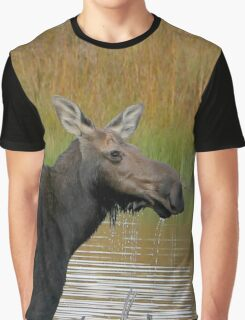 Maine Moose at dusk Graphic T-Shirt