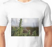 Web on the Gorse Unisex T-Shirt