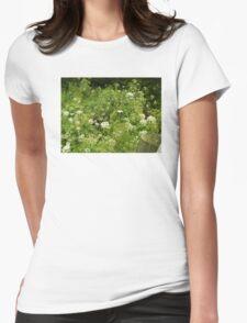 summer in Devon Womens Fitted T-Shirt