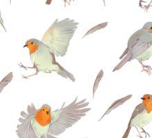 little robin Sticker