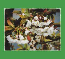 Flower Art - Apple Blossoms Kids Tee