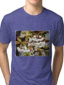 Flower Art - Apple Blossoms Tri-blend T-Shirt