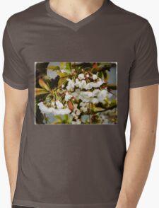 Flower Art - Apple Blossoms Mens V-Neck T-Shirt