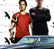 Supernatural 11 Sticker
