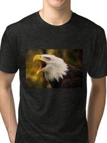 Wisdom Tri-blend T-Shirt