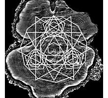 Geometree Photographic Print