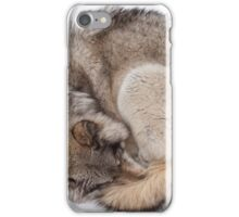 Ball of Wolf iPhone Case/Skin