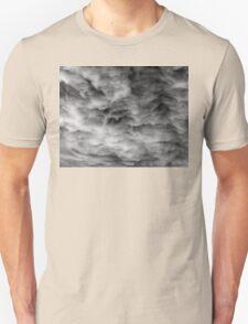 ama no hara - ni (New) Unisex T-Shirt