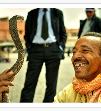 The Snake Charmer  Sticker